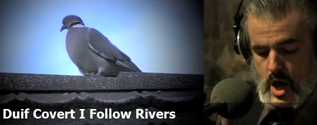 Duif Covert I Follow Rivers