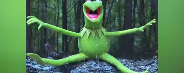 Kermit De Kikker Doet De Ice Bucket Challenge