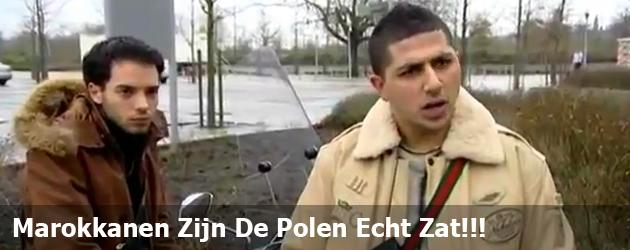 Marokkanen Zijn De Polen Echt Zat!!!