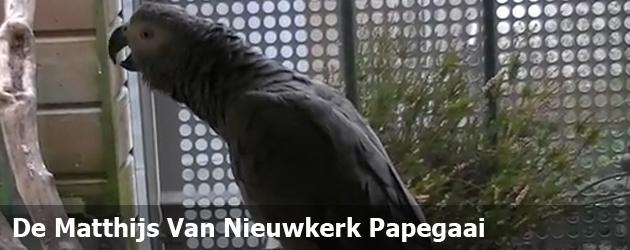 De Matthijs Van Nieuwkerk Papegaai
