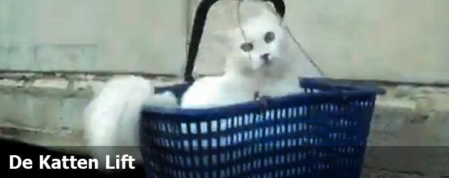 De Katten Lift