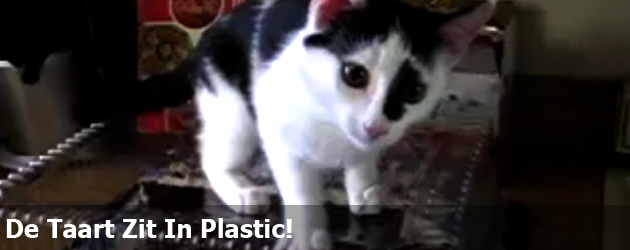 De Taart Zit In Plastic!