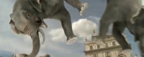 Olifanten Bungeejump In Londen