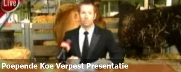 Poepende Koe Verpest Presentatie