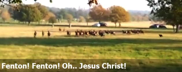 Fenton! Fenton! Oh.. Jesus Christ!