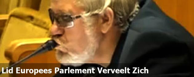 Lid Europees Parlement Verveelt Zich