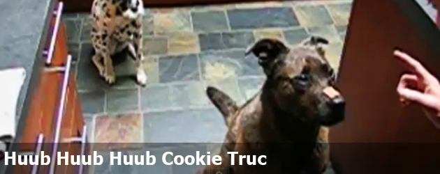 Huub Huub Huub Cookie Truc
