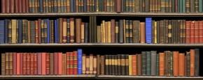 Meisje Kijkt Stiekem Porno In De Bibliotheek