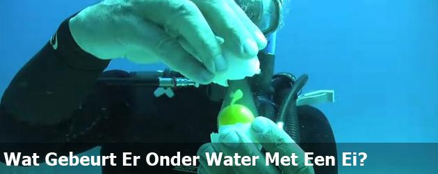 Wat Gebeurt Er Onder Water Met Een Ei?