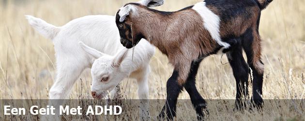 Een Geit Met ADHD