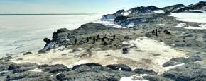 Google Street View Op Antarctica
