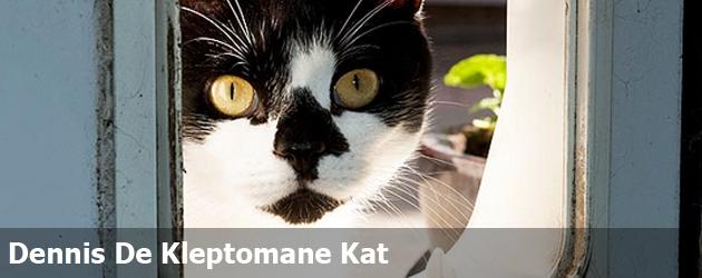 Dennis De Kleptomane Kat