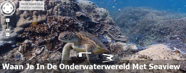 Waan Je In De Onderwaterwereld Met Seaview