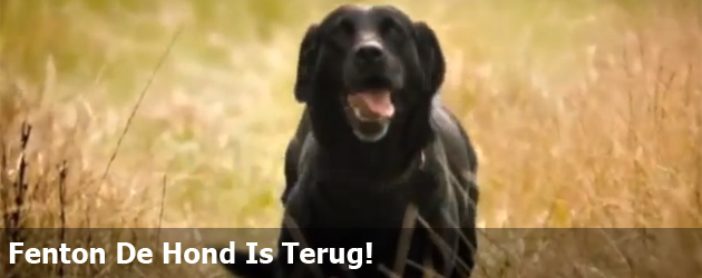 Fenton De Hond Is Terug!