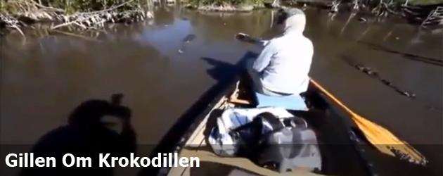 Gillen Om Krokodillen
