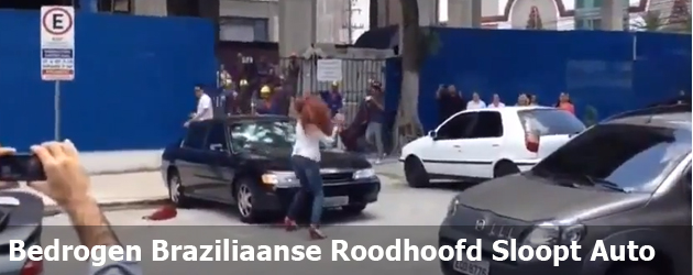 Bedrogen Braziliaanse Roodhoofd Sloopt Auto