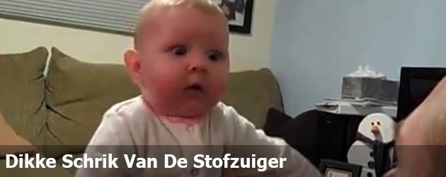 Dikke Schrik Van De Stofzuiger