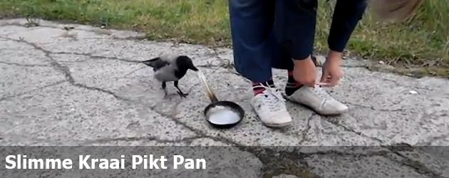 Slimme Kraai Pikt Pan