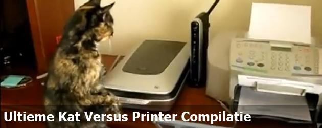 Ultieme Kat Versus Printer Compilatie