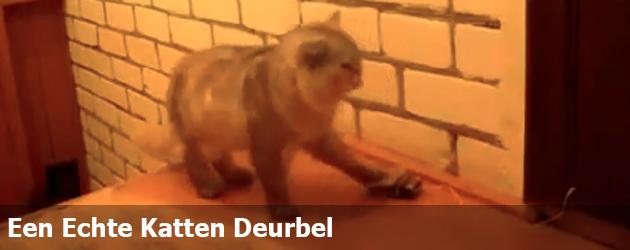 Een Echte Katten Deurbel