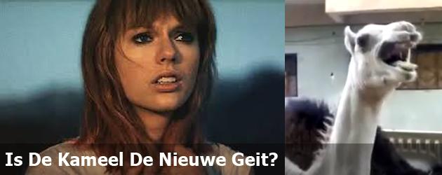 Is De Kameel De Nieuwe Geit?