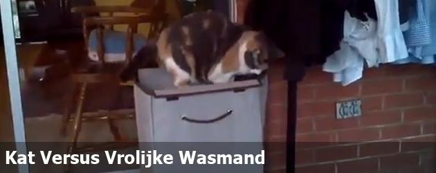Kat Versus Vrolijke Wasmand
