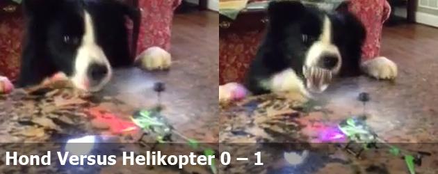 Hond Versus Helikopter 0 – 1