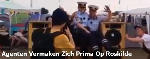 Agenten Vermaken Zich Prima Op Roskilde
