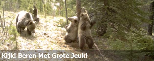 Kijk! Beren Met Grote Jeuk!
