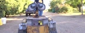 Wall-E In Het Echie