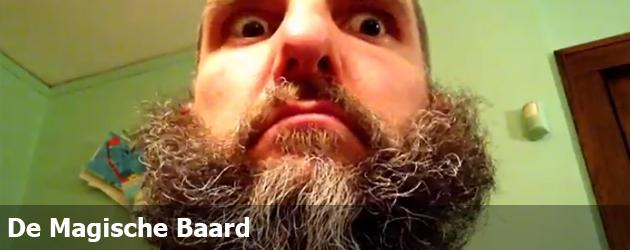 De Magische Baard