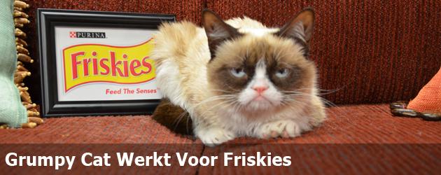 Grumpy Cat Werkt Voor Friskies