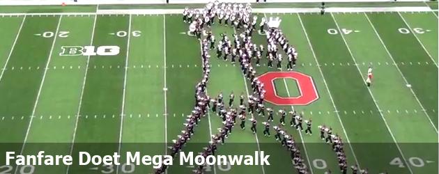 Fanfare Doet Mega Moonwalk