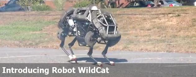 Introducing Robot WildCat