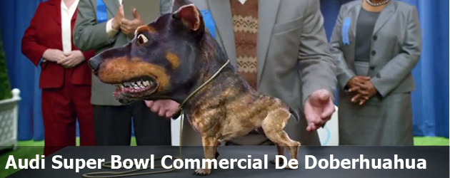 Audi Super Bowl Commercial De Doberhuahua