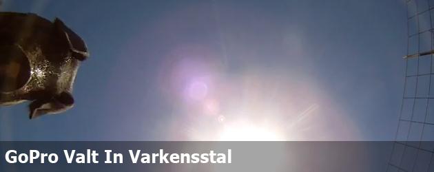 GoPro Valt In Varkensstal