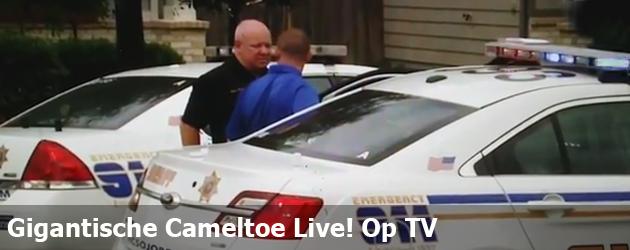 Gigantische Cameltoe Live! Op TV