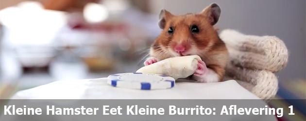 Kleine Hamster Eet Kleine Burrito: Aflevering 1