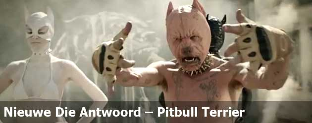 Nieuwe Die Antwoord - Pitbull Terrier