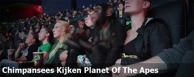 Chimpansees Kijken Planet Of The Apes
