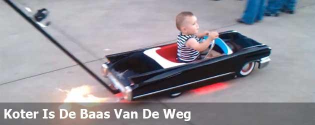 Koter Is De Baas Van De Weg