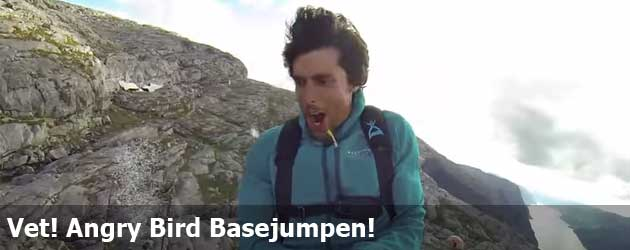 Vet! Angry Bird Basejumpen!