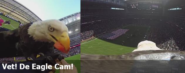 Vet! De Eagle Cam!