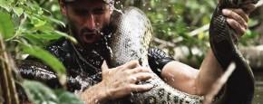 Man Opgegeten Door Anaconda: De Beelden!