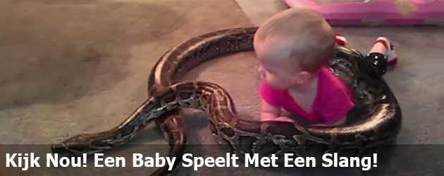 Kijk Nou! Een Baby Speelt Met Een Slang!