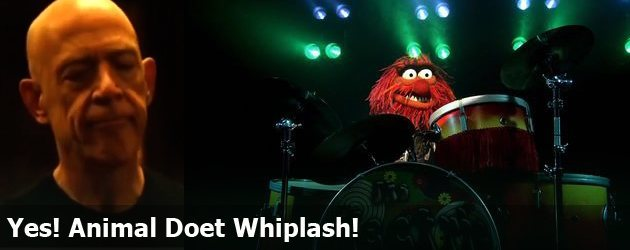Yes! Animal Doet Whiplash
