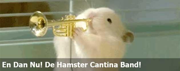 En Dan Nu! De Hamster Cantina Band!