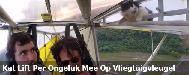 Kat Vliegt Per Ongeluk Mee Op Vliegtuigvleugel
