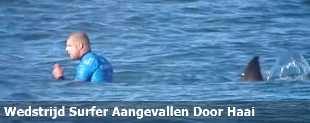 Wedstrijd Surfer Aangevallen Door Haai