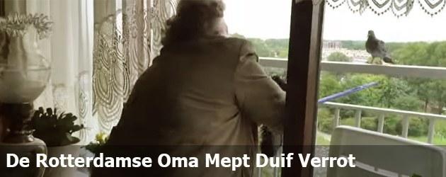 De Rotterdamse Oma Mept Duif Verrot